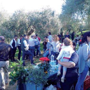 """Il Viaggiatore Magazine - """"Camminata tra gli olivi"""" - Caronia, Messina"""