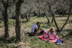 IlViaggiatoreMagazine-Tra gli ulivi di Trevi-Perugia-Pic&Nic