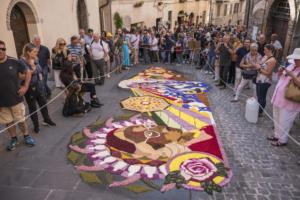IlViaggiatoreMagazine-Infiorata di Spello-Preparazione-Spello-Perugia