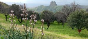 IlViaggiatoreMagazine-Il Sentiero dell'Inglese-Parco Nazionale dell'Aspromonte-Calabria-Italia