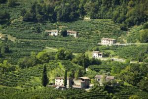 Rolle-Frazione di Valdobbiadene-Colline Conegliano Valdobbiadene-Treviso