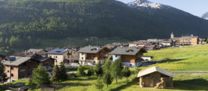 Hotel Lac Salin SPA & Mountain Resort-Casetta di fieno-Livigno-Sondrio