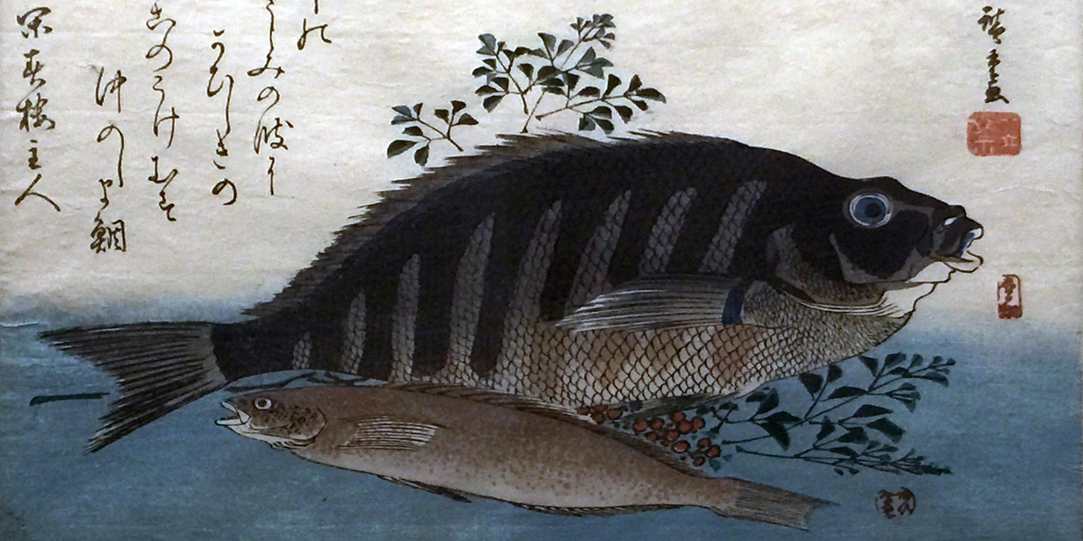 Cernia e pagello e una pianta di nandina-1840-1842-Xilografia policroma su carta da gelso-Hiroshige-Utagawa-Arte giapponese