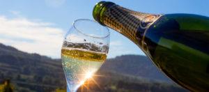 Calice di Cava, vino frizzante spagnolo