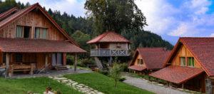 Dolomiti Village-Casa sull'albero-Comeglians-Udine