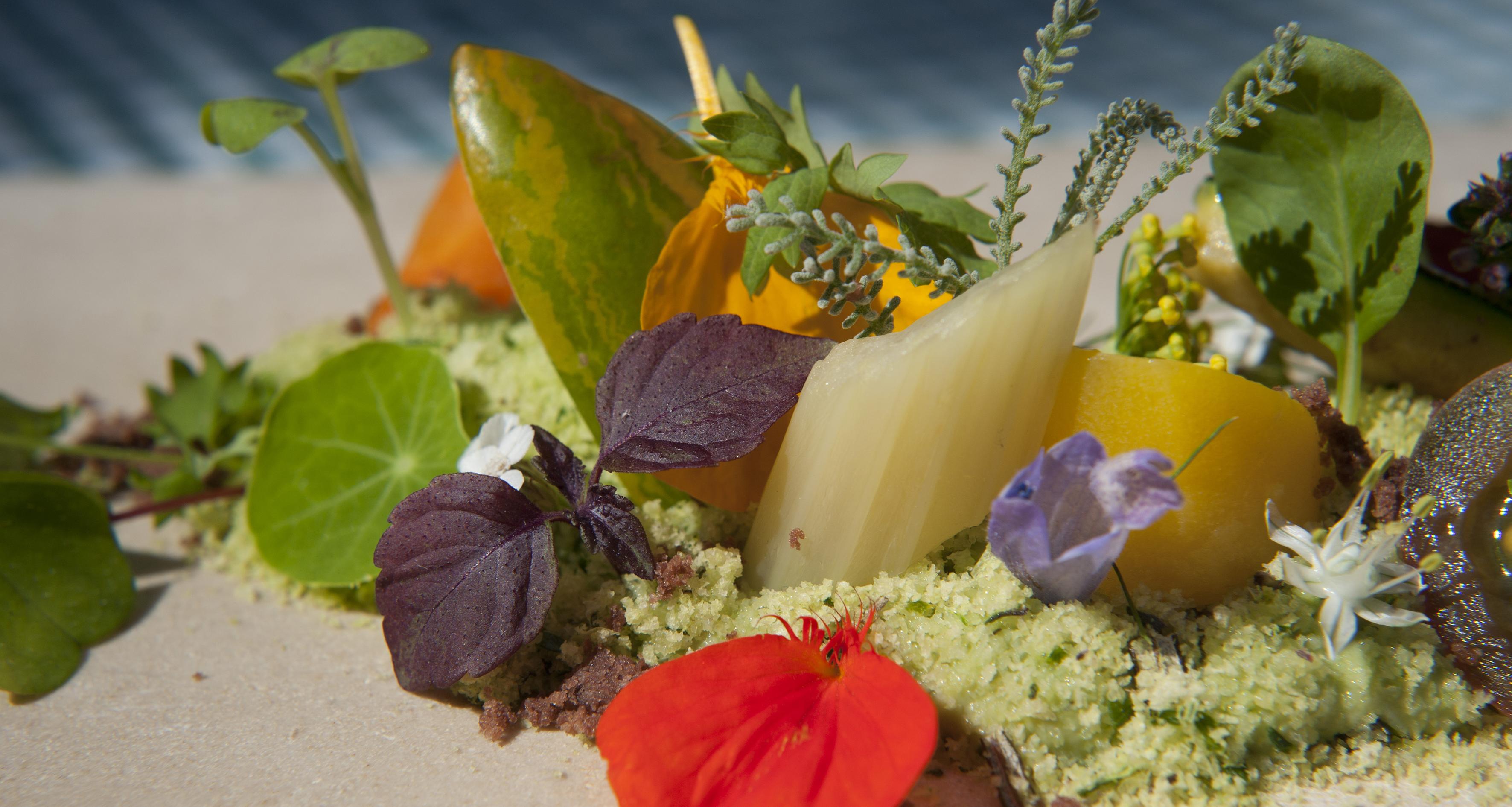 La cucina con i fiori di alta montagna