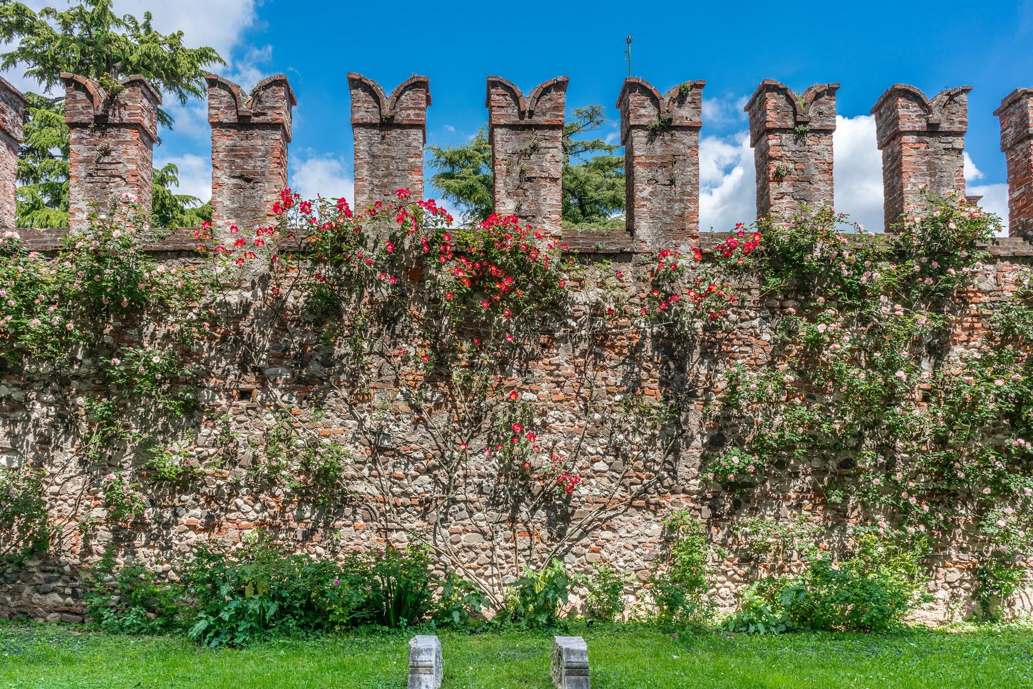 Mura esterne-Castello di Thiene-Vicenza