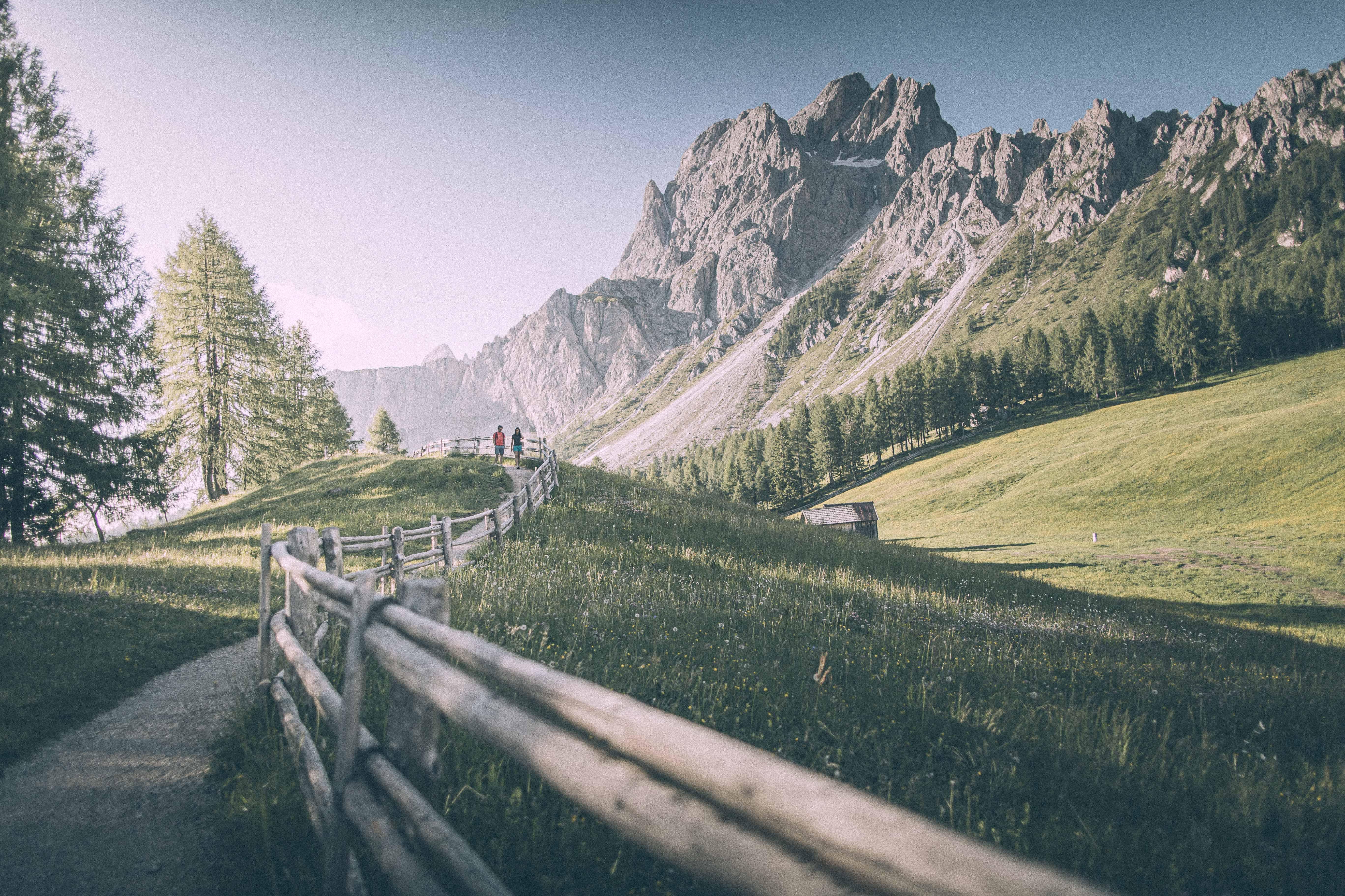 Sentiero in Alta Pusteria- Alto Adige