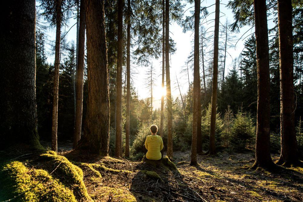 Yoga e meditazione in vacanza