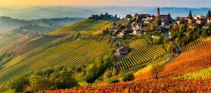 Panorama delle Langhe-Serralunga-Cuneo