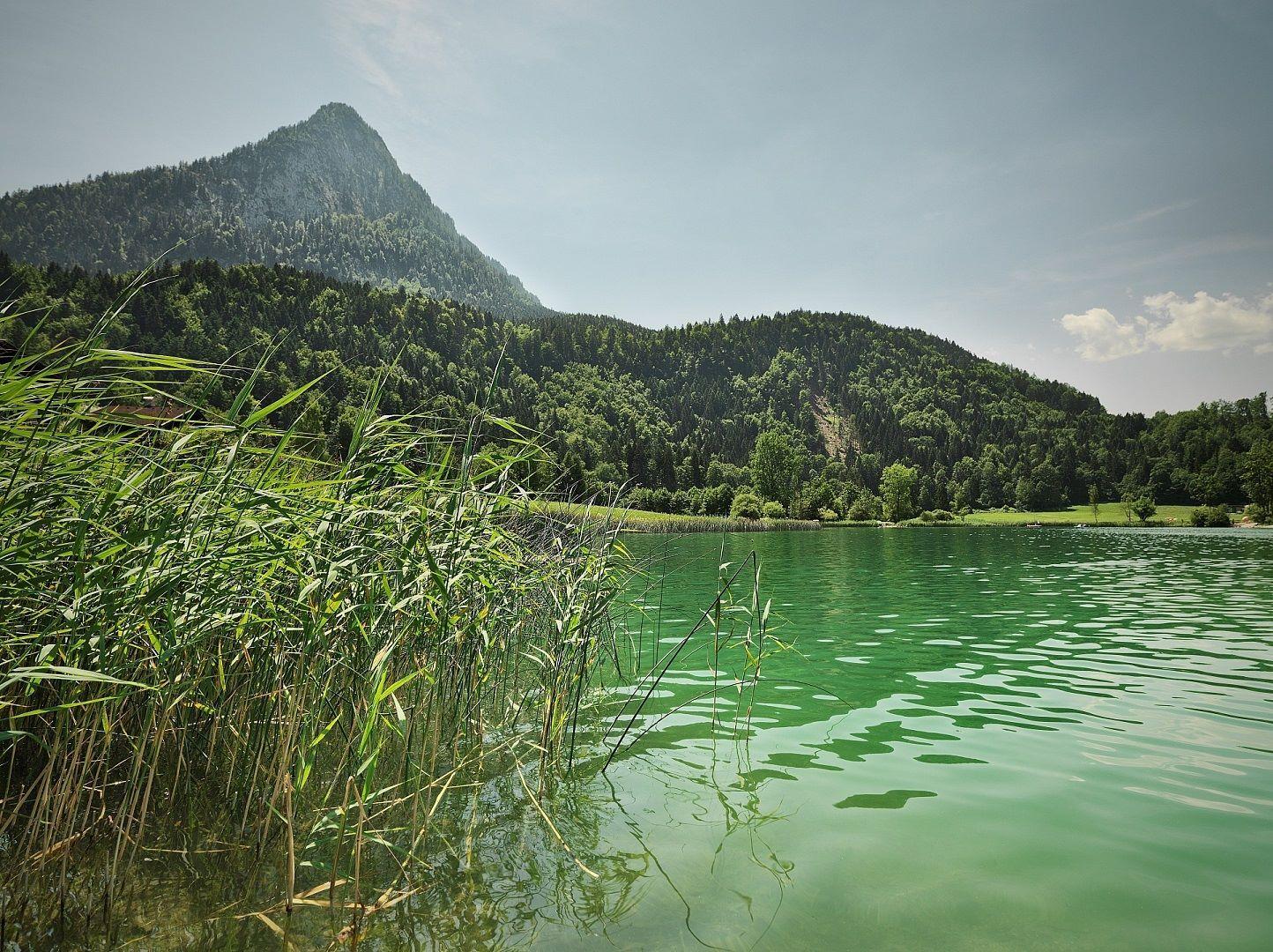 Thiersee -Sorgente di forza-Kufsteinerland in Tirolo