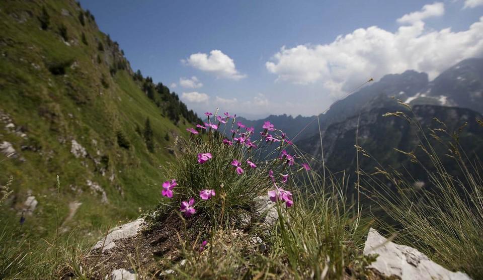 Belluno nelle Dolomiti
