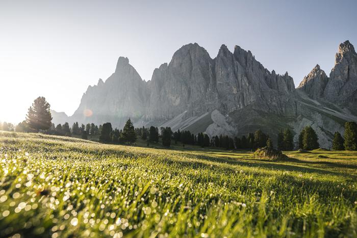 vitalpina hotels e montagna